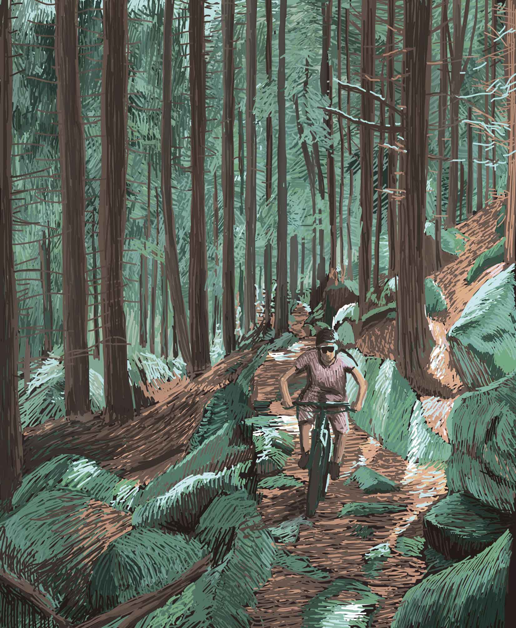 Black Forest – Digital Illustration. A Biker drives through the Black Forest flooded with light. Black Forest – limited Fine Art Print